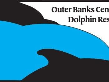 Outer Banks Dolphin Tours Kitty Hawk Kites